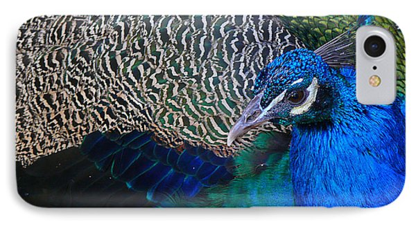King Of Colors IPhone Case by Evelyn Tambour