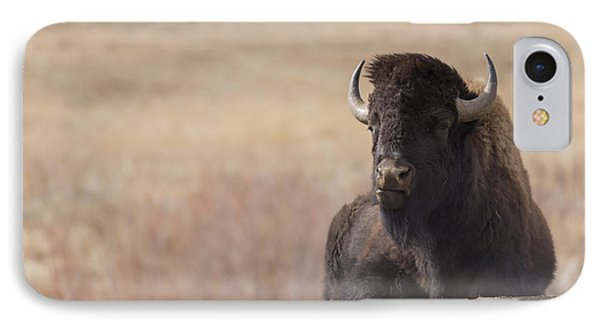 King Of The Hill At Custer State Park South Dakota IPhone Case
