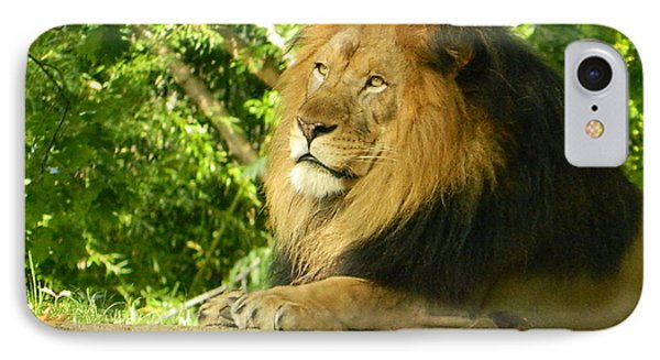 IPhone Case featuring the photograph King Of The Jungle by Emmy Marie Vickers