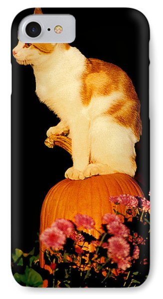 King Of The Pumpkin IPhone Case by Peg Urban