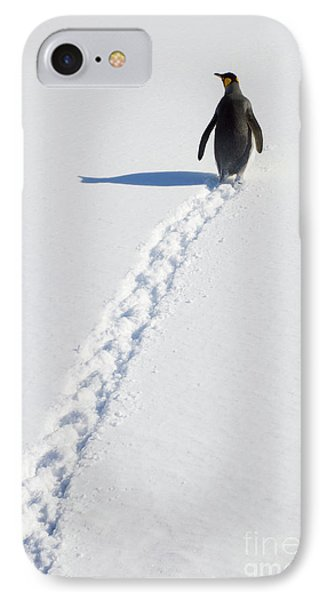 King Penguin And Tracks S Georgia Island IPhone 7 Case