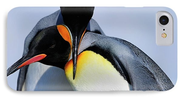 King Penguins Bonding Phone Case by Tony Beck