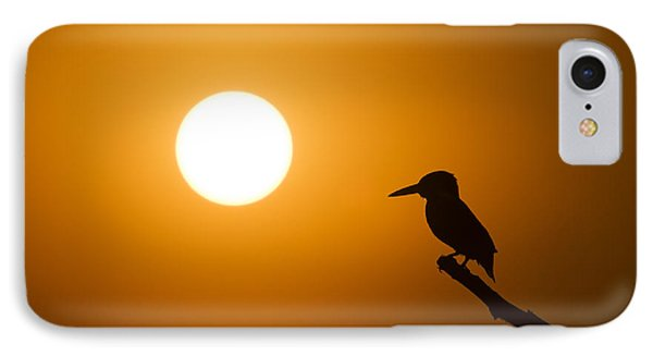 Kingfisher Sunset IPhone Case by Tim Gainey