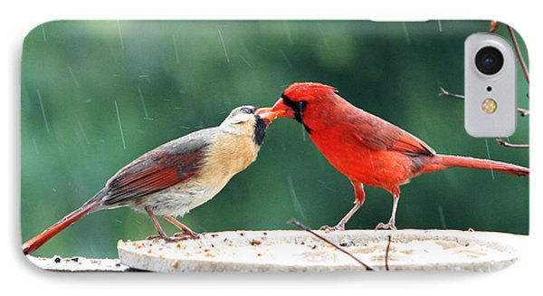 IPhone Case featuring the photograph Kissing Cardinals by John Freidenberg