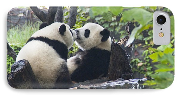 IPhone Case featuring the photograph Kissing Pandas by Jialin Nie Cox ChinaStock