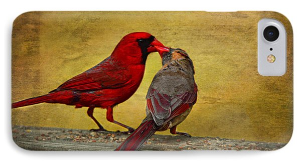 IPhone Case featuring the photograph Kissy Kissy Birds by Linda Segerson