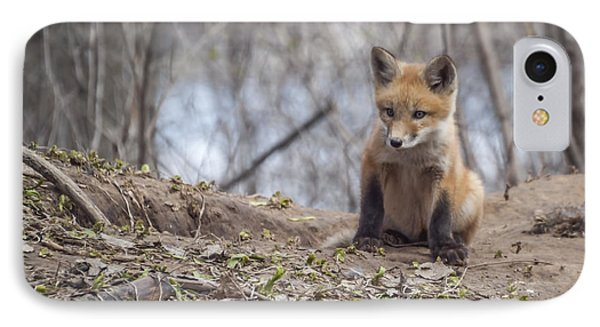 Kit Fox 2011-1 IPhone Case