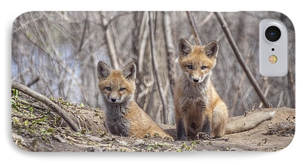 Kit Foxes 2011-1 IPhone Case