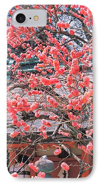 Kitano-tenmangu Kyoto Japan IPhone Case