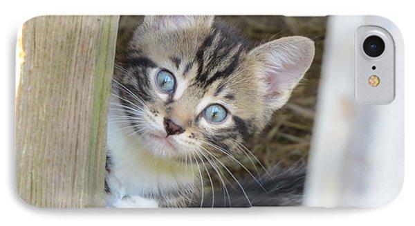 Kitten Phone Case by Diane Mitchell