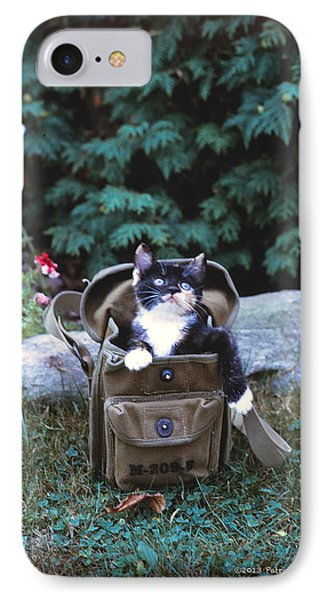 Kitten In A Canvas Bag Phone Case by Patricia Keller