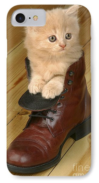Kitten In Shoe Ck181 IPhone Case by Greg Cuddiford