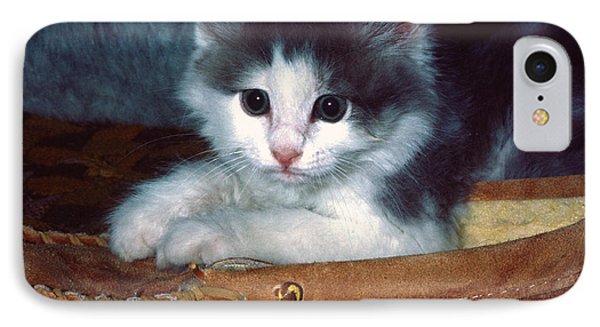 Kitten In Slipper IPhone Case by Sally Weigand