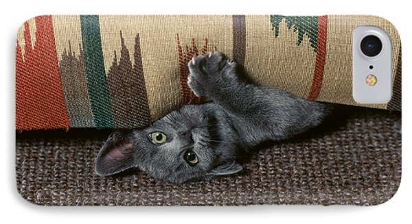 Kitten Under Couch Phone Case by James L. Amos