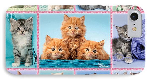 Kittens Gingham Multi-pic IPhone Case by Greg Cuddiford