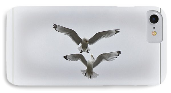 Kittiwakes Dancing In The Air IPhone Case by Heiko Koehrer-Wagner