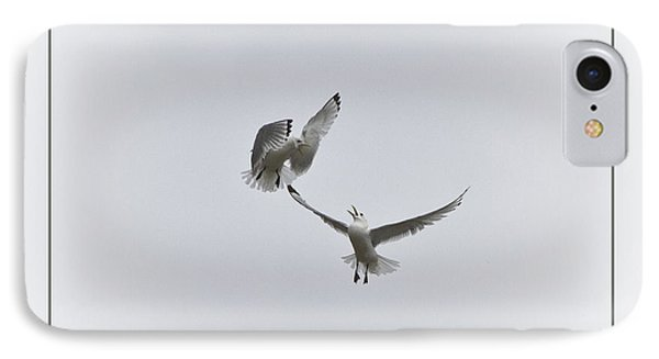 Kittiwakes IPhone Case by Heiko Koehrer-Wagner