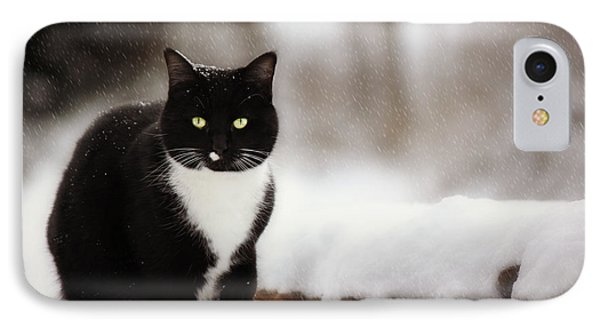 Kitty Snow Play Phone Case by Melanie Lankford Photography