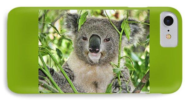 Koala Bear IPhone Case