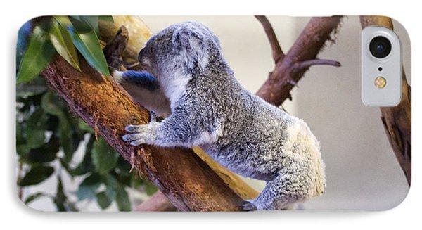Koala Climbing Tree IPhone Case by Chris Flees