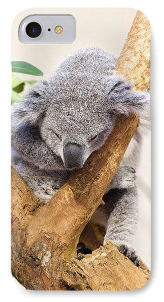 Koala Sleeping  IPhone Case by Chris Flees