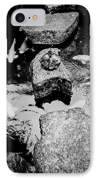 Koi Around The Old Stone Path IPhone Case