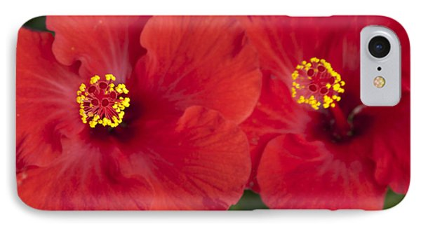 Kokio Ulaula - Tropical Red Hibiscus Phone Case by Sharon Mau
