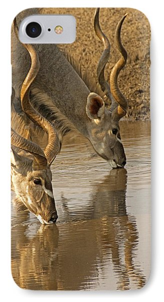 IPhone Case featuring the photograph Kudus by Dennis Cox WorldViews