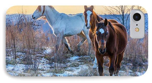 Ky Wild Horses IPhone Case by Anthony Heflin