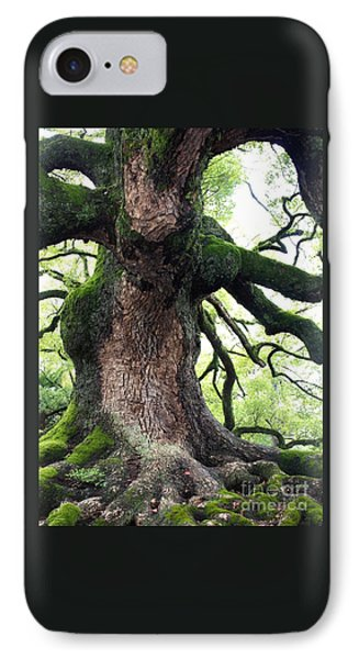 Kyoto Temple Tree IPhone Case by Carol Groenen