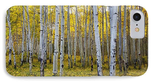 La Sal Aspen IPhone Case