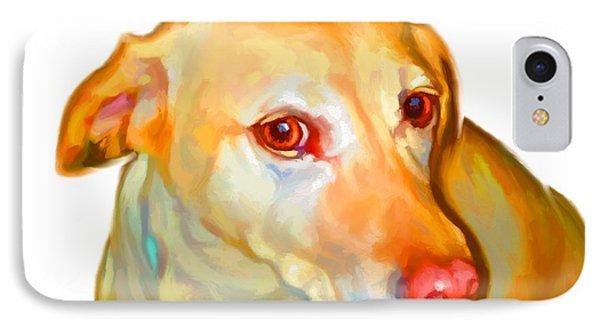 Labrador Retriever Art IPhone Case by Iain McDonald