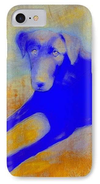 Labrador Retriever In Blue And Yellow Phone Case by Ann Powell