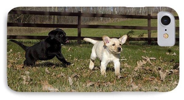 Labrador Retriever Pups Phone Case by Linda Freshwaters Arndt