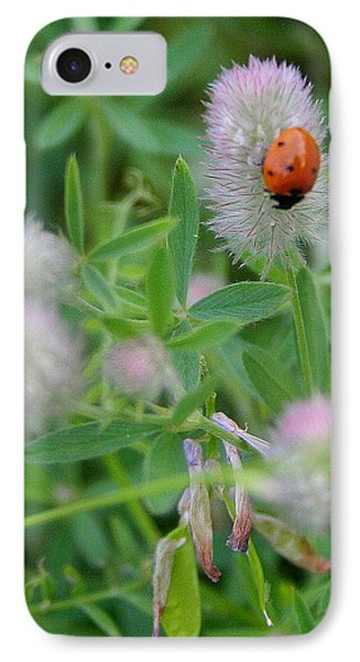 Lady Bug Among The Flowers  IPhone Case