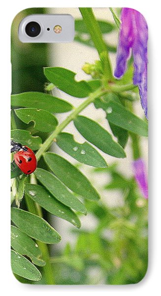 Lady Bug Among The Wild Flowers IPhone Case