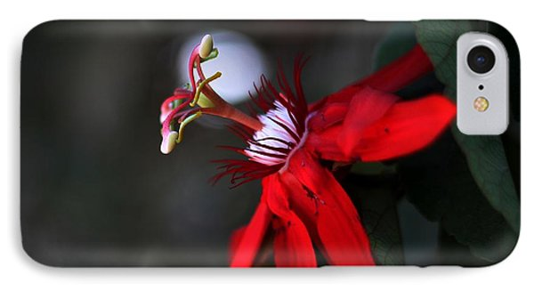 IPhone Case featuring the photograph Lady Margaret - Passionflower  by Ramabhadran Thirupattur