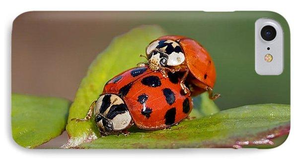 Ladybird Coupling IPhone Case