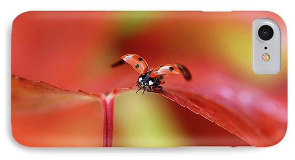 Ladybird In Autumn IPhone Case