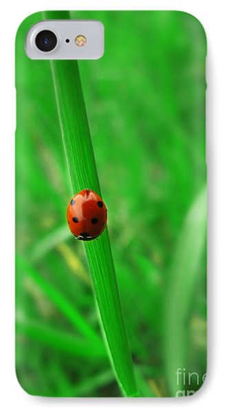 Ladybird Phone Case by Jelena Jovanovic