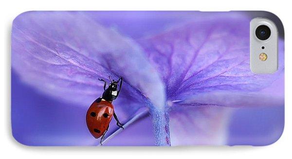 Ladybird On Purple Hydrangea IPhone Case