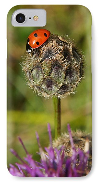 Ladybird IPhone Case by Ron Harpham