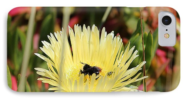 Ladybug And A Bumblebee IPhone Case by Kevin Ashley
