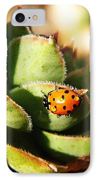 Ladybug And Chick Phone Case by Chris Berry