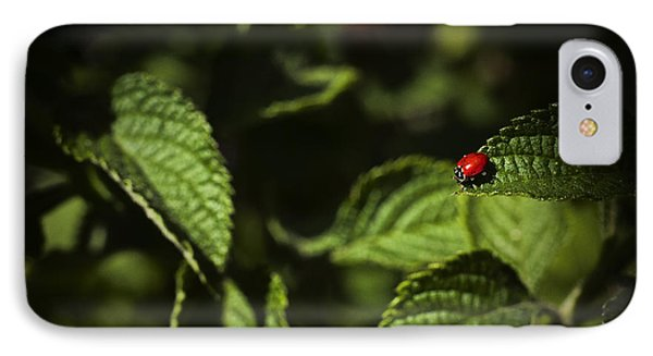 IPhone Case featuring the photograph Ladybug by Bradley R Youngberg