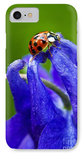 Ladybug IPhone Case by Carrie Cranwill