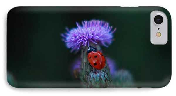 Ladybug IPhone Case by Jeff Swan