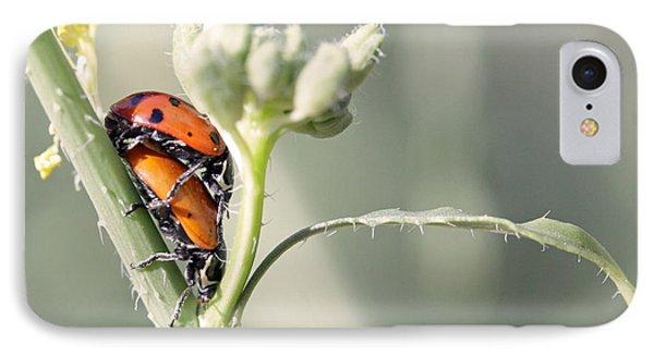 Ladybug Love Phone Case by Shoal Hollingsworth