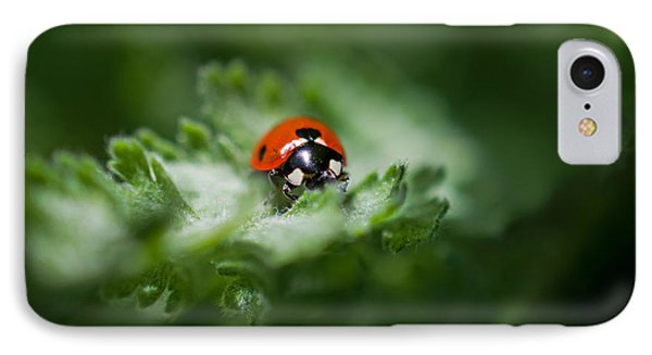 Ladybug On The Move IPhone Case by Jordan Blackstone