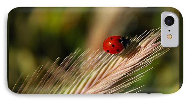 IPhone Case featuring the photograph Ladybug by Richard Stephen